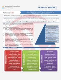 visual resume sample resume format templates visual resume sample for mid level