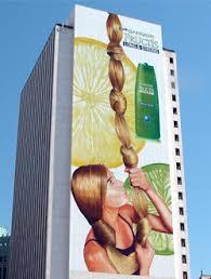 <b>Wall Murals</b>