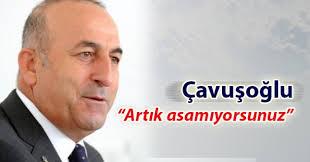 Image result for Mevlut Cavusoglu