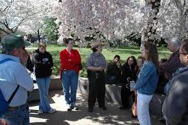 Ranger Programs - <b>Cherry Blossom</b> Festival (U.S. National Park ...