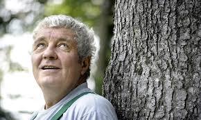 Revierförster Rolf Kloter blickt auf eine lange und abwechslungsreiche Laufbahn zurück. Bild: Walter Pfäffli - topelement