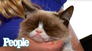 Can <b>Grumpy Cat</b> Smile? I PEOPLE Pets