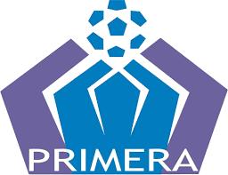Primera División de Fútbol Profesional