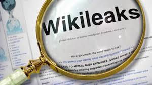 Risultati immagini per julian assange wiki