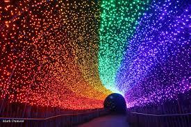 PNC Festival of Lights - Cincinnati Zoo & Botanical Garden®