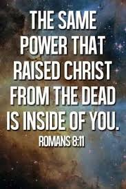 Image result for Romans 8:5-6 bible gateway