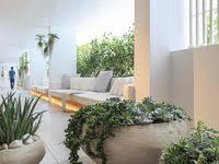 13 лучших изображений доски «растения и вазоны» | Растения ...