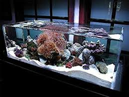 Pure White Aquarium <b>Fish Tank Silica</b> Sand. Large 25kg Bag ...
