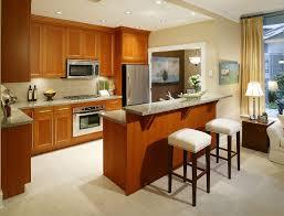 Modular Kitchen In Small Space Kitchen In Small Space Minipicicom