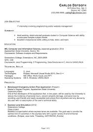 functional resume sample  it internshipfunctional sample resume it internship pg