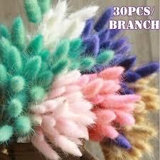 30Pc <b>Natural</b> Dried Flower Colorful Lagurus Ovatus Real <b>Rabbit Tail</b> ...
