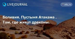 Боливия. Пустыня Атакама . <b>Там, где живут драконы</b>. : olly_ru ...