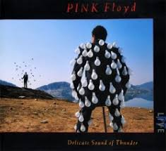 <b>Delicate Sound of Thunder</b> - Pink Floyd | Songs, Reviews, Credits ...