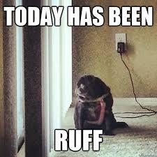 today has been ruff memes | quickmeme via Relatably.com