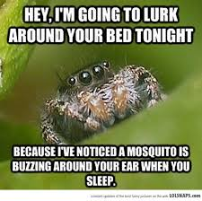 "The Best Of The ""Misunderstood Spider"" Meme (19 Pics) - POPHANGOVER via Relatably.com"