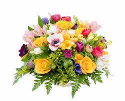 Znalezione obrazy dla zapytania kwiaty do kopiowania