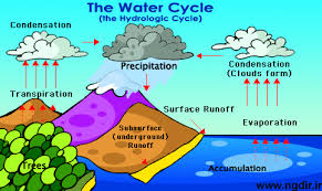 water cycle diagram pictures   daniel radcliffeslabel the water cycle diagram