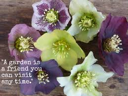 garden-quotes.jpg