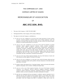 memorandum article of association companies act debenture