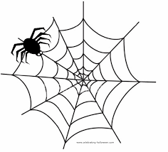 Small Picture Spider Web Coloring Pages Free Fly Stuck In A Spiderus Web