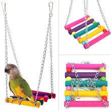 <b>bird parrot</b> toy