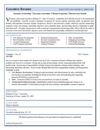 resume sales and marketing template corporate executives make up the board resume it template