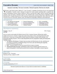 executive level resume format executive resume example c level sample resume executive