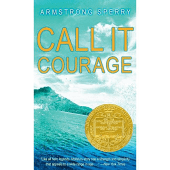 Call It Courage - by Armstrong Sperry (Paperback)