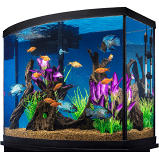 Marineland 38 Gallon Aquarium Starter Kit size: 38 Gal, black/saltwater